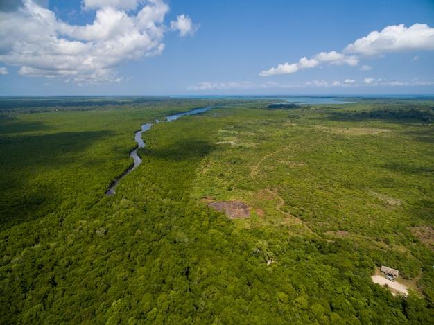 ザンジバル、アフリカでキャプチャされた熱帯の緑のフィールドを通過する川の空中ショット