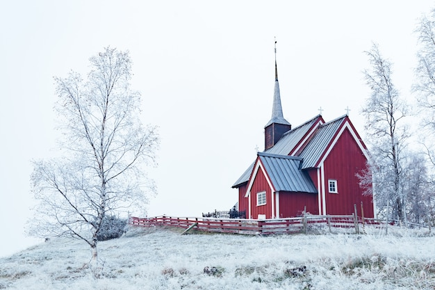 晴れた空の下で雪に覆われた裸の木々に囲まれた雪の地域で赤い建物のワイドショット