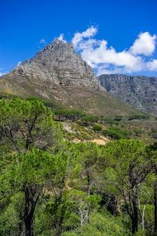 ケープタウン、南アフリカ共和国の有名なテーブルマウンテンの垂直方向のショット