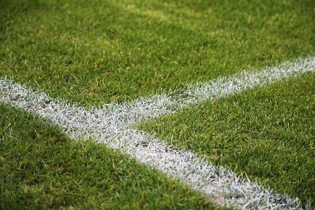 ドイツの緑のサッカーフィールドに塗られた白い線のクローズアップショット