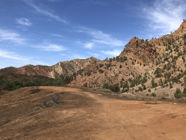 青い曇り空の下で木に覆われた山の近くの経路