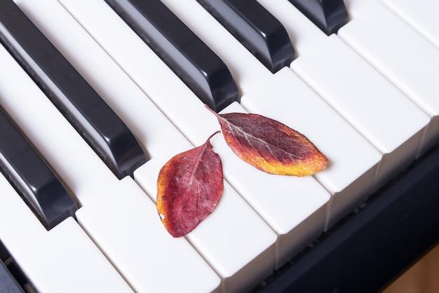 ピアノの鍵盤と紅葉