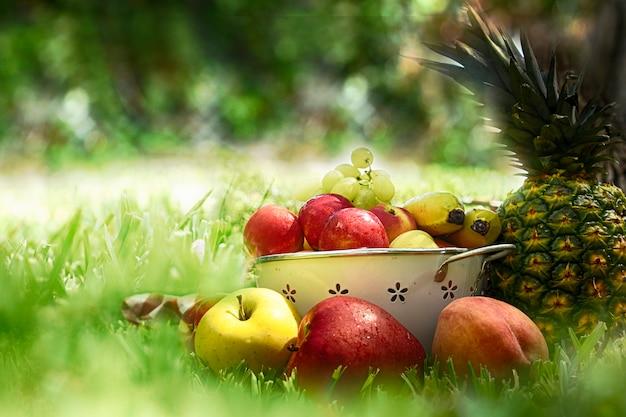 Летний фон со спелыми фруктами