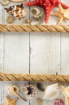 木製の背景に貝殻