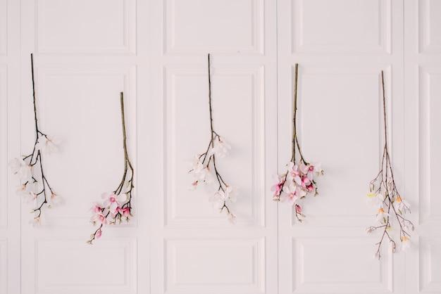 家の白い壁に開花木の枝