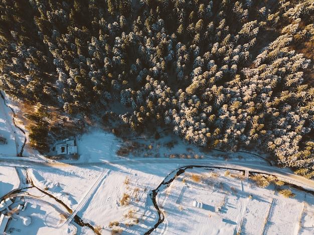 航空写真、冬の日の出の針葉樹林の上からの素晴らしい眺め