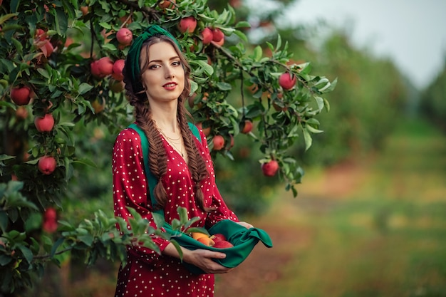 Сбор урожая в сельской местности. красивая молодая девушка в красном платье собирать спелые яблоки в фартук в яблоневом саду.