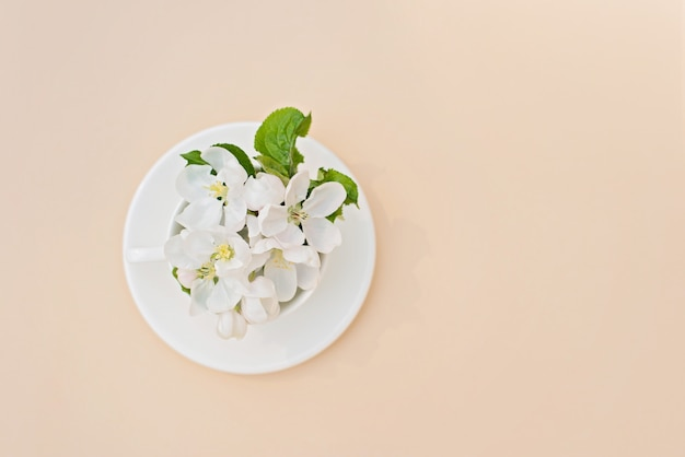 ベージュ色の背景のコーヒーカップに花が咲く白い春のリンゴの木。春夏のコンセプトです。グリーティングカード。コピースペース。フラット横たわっていた。