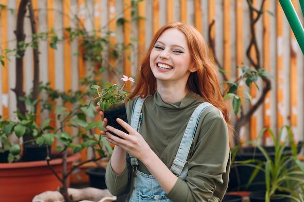Концепция домашнего садоводства. смеяться над молодой милой женщины усмехаясь с цветочным горшком в руках. весенний дом садового растения.