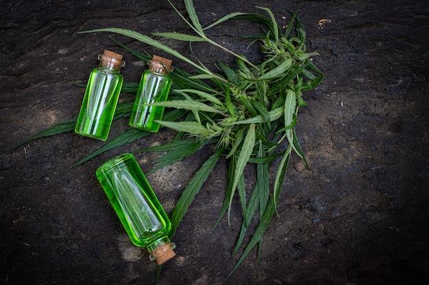 Стеклянная бутылка с маслом кбр и цветением конопли на заднем плане