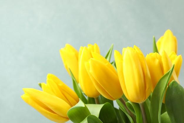灰色の美しい新鮮な黄色のチューリップ。テキストのためのスペース