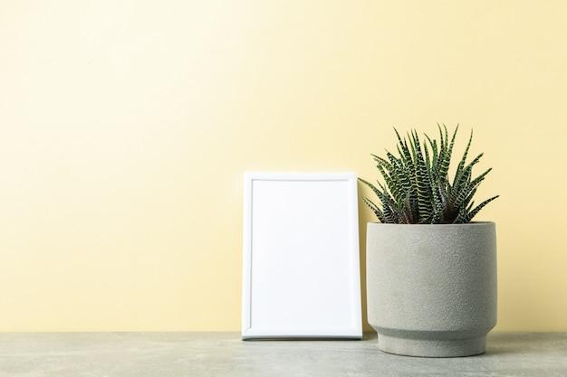 Сочные растения и пустая рамка на бежевой поверхности