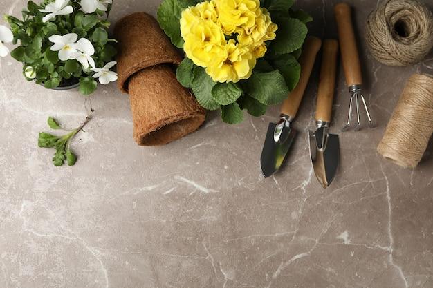 パンジーとサクラソウポットと園芸工具、灰色、上面図