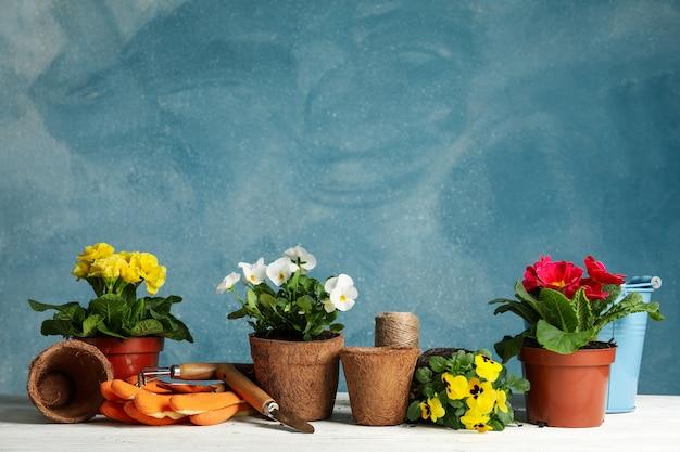 花と青い背景、テキスト用のスペースに対してガーデニングツール