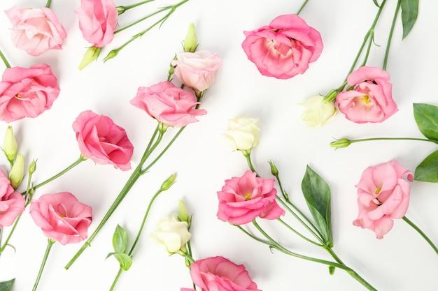 Композиция с красивыми цветами эустомы на белом
