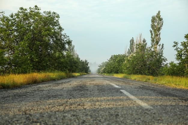 霧の道。美しい夏の朝。夏の自然