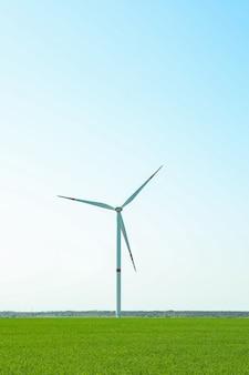 緑の芝生のフィールド、テキスト用のスペースの風力タービン。美しい春の緑