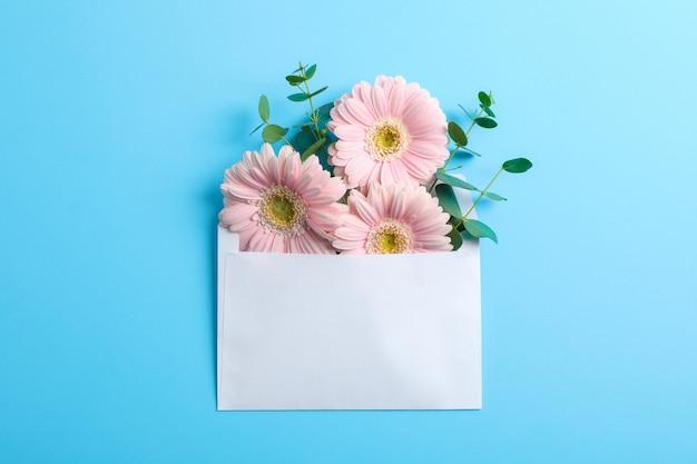 封筒、テキスト用のスペースに美しい新鮮なガーベラ