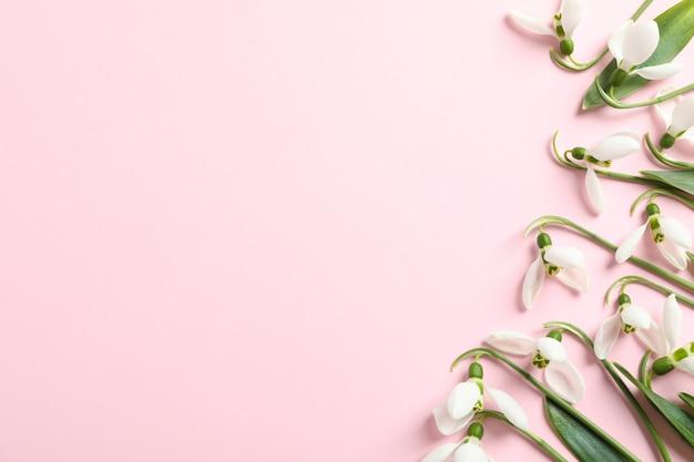 Красивые весенние цветы подснежника на цветном фоне, место для текста