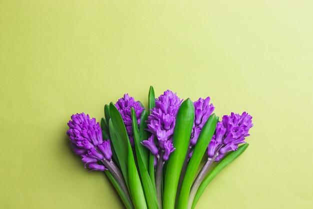 黄色の背景に紫のヒヤシンスの花束