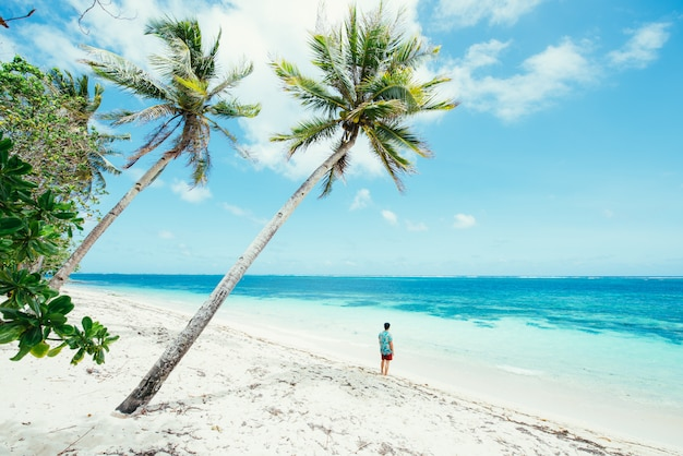 Человек стоял на пляже и наслаждаясь тропическим местом с видом. цвета карибского моря и пальмовых деревьев на заднем плане. понятие о путешествиях и образе жизни