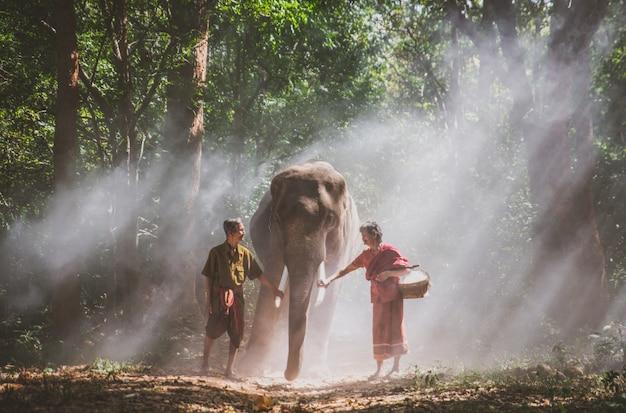 タイのジャングルに象と歩いている老夫婦