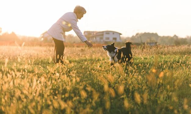 Женщина среднего возраста играет со своей собакой колли