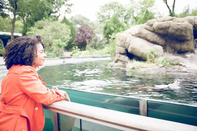アシカと動物園でショーを楽しんでいる若い女性
