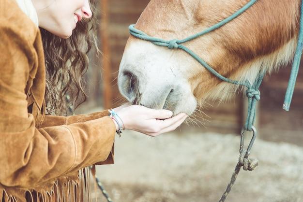 彼女の馬をかわいがる女性。手と馬の口にクローズアップ