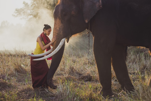 Красивая тайская женщина проводит время со слоном в джунглях