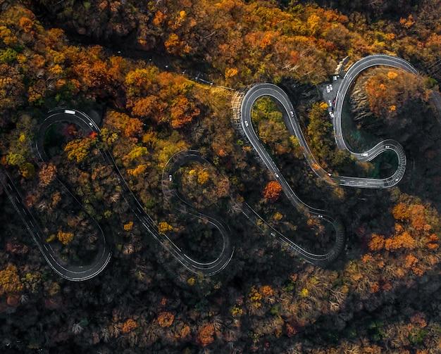日本の秋の曲がりくねった道