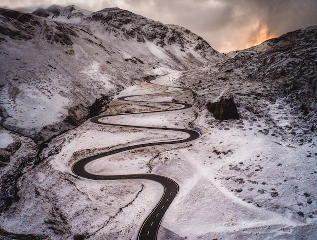 森と雪の道