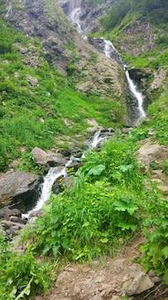 Живописный пейзаж с красивым водопадом в лесу среди богатой растительности. родниковая вода течет с горы