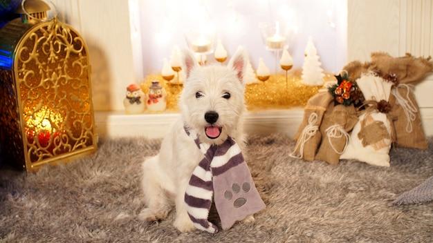 Милая маленькая собака, сидя у камина на рождество