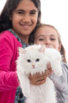 Две красивые девушки играют со своей кошкой