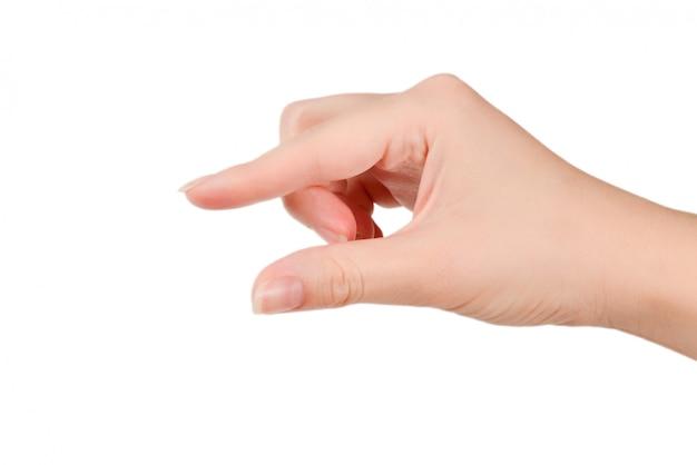 Рука женщины держит что-то изолированное на белизне.