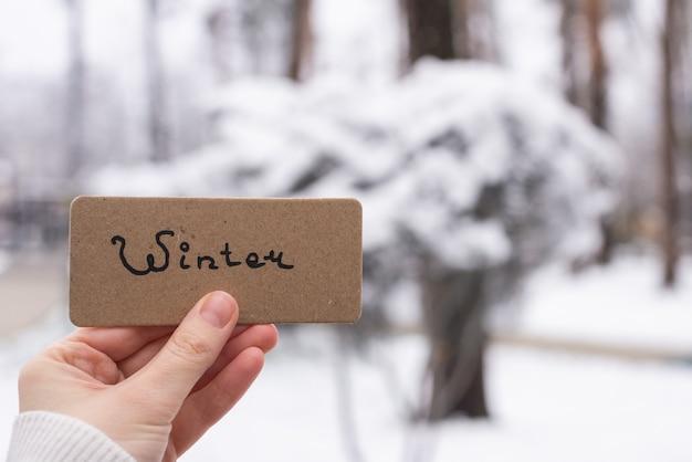 Рука держит карту в зимнем парке