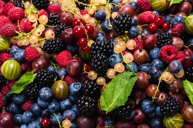 グーズベリー、ブルーベリー、桑、ラズベリー、白と赤スグリの背景。