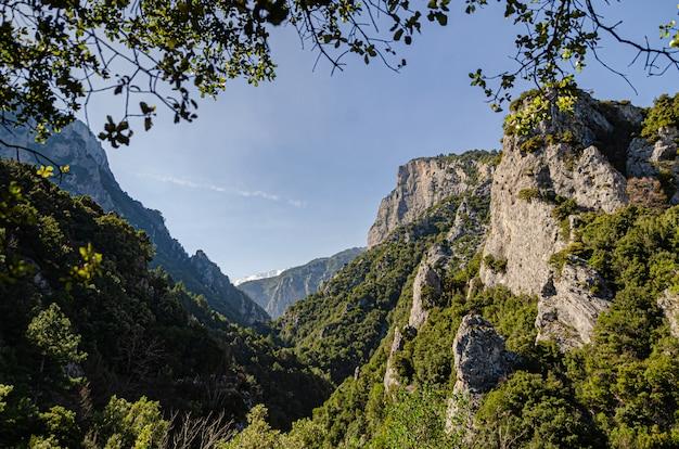 緑の森に覆われた崖の美しい景色。ゼウスの浴場の観光遊歩道からの眺め