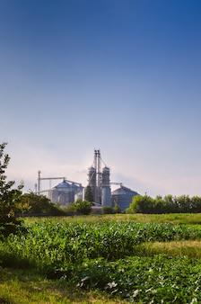 農業企業。顔に穀物を保存するための光沢のある鉄の容器。