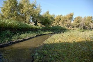 Водный путь к озеру