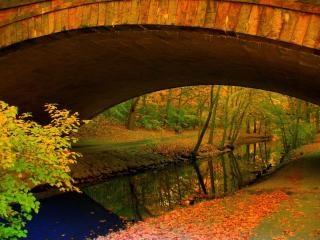秋には川になる