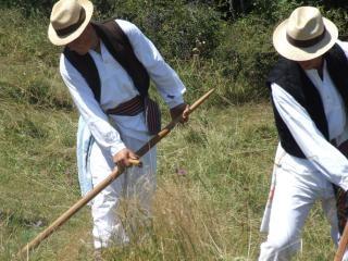 干し草のメーカーは、男性