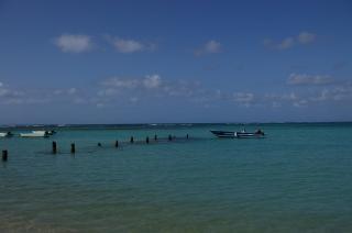 ビーチ、海