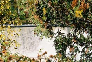 滝、風光明媚なカナダ