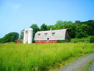 赤い納屋、自然