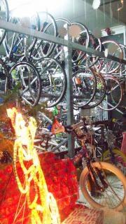 自転車小売業、山