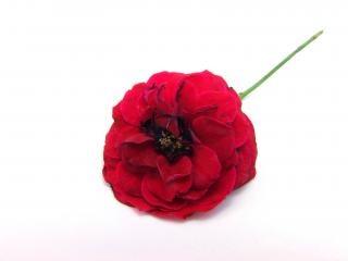 赤は、お祝いのバラ