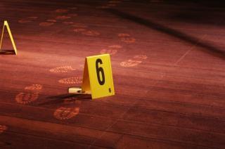 現場調査、寄木細工