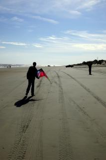 Утка - воздушный змей, команда, пляж